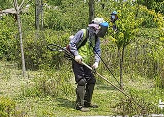 위험한 노인일자리사업, 하루 평균 약 4건 안전사고 발생
