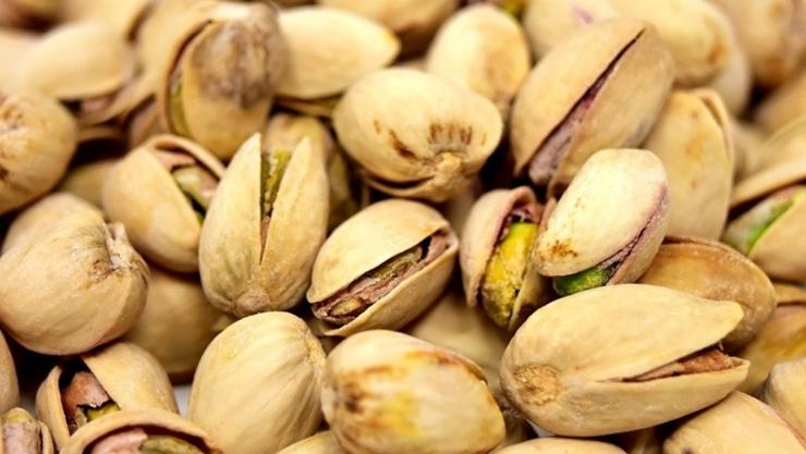 50+ 세대 근감소증 예방 위한 단백질 식품 10가지